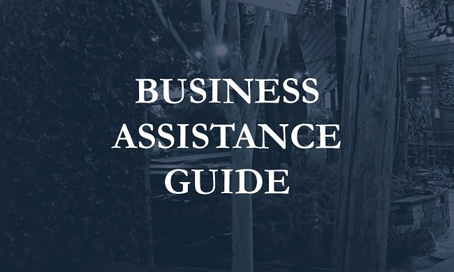 Business-BusinessAssistanceGuide-icon