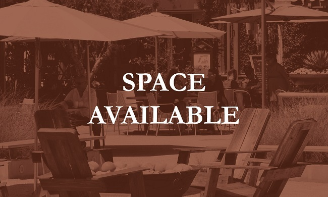 Business-SpaceAvailable-icon