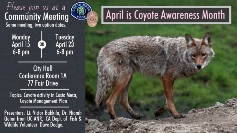 coyote-meetings-April 2019